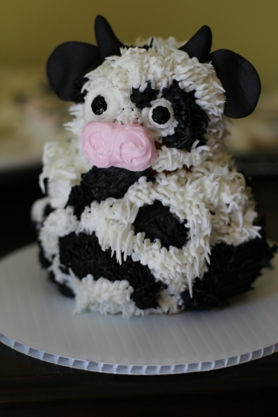 Cow Smash Cake Cutest Thing Ever Cow Cakes Cow