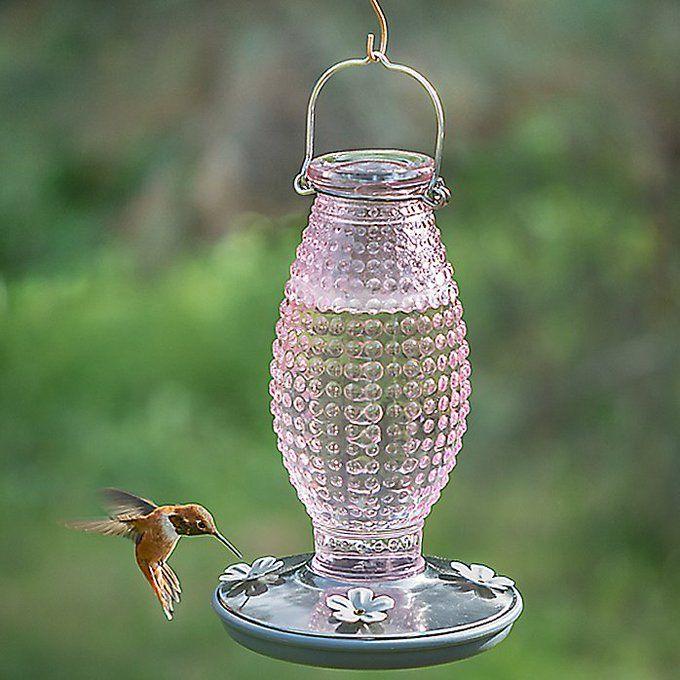 ハチドリ用の給水器というすごくユートピア感あふれる物体 - Togetterまとめ