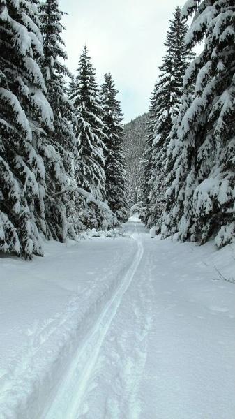 Polska zima...