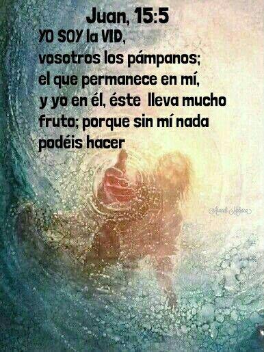 Juan, 15:5 - YO SOY la vid, vosotros los pámpanos; el que permanece en mí, y yo en él, éste lleva mucho fruto; porque sin mí nada podéis hacer.