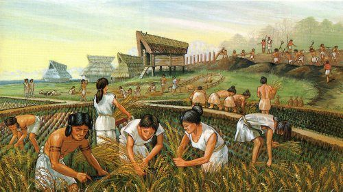 "Immigrants must have arrived in northern Kyushu, in Japan from the Asian continent with their wet rice farming knowledge and advanced irrigation techniques at their beginning of the Yayoi period. This is clear because the technology did not show gradual innovations or advances but even the earliest Yayoi rice fields were already a complex system of canals, dams, paddy-field walls, and water intakes and outlets"" to irrigate their fields."