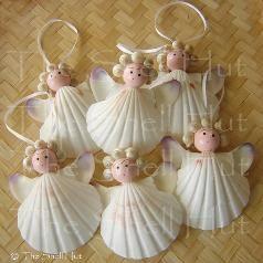 Coquillages, sand dollars et une petite tête de bois :des petits anges sont nés !