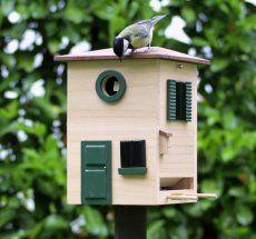 17 migliori idee su casette per uccelli su pinterest for Planimetrie semplici della casetta di legno