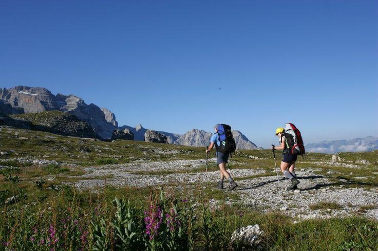 #trekking in #Trentino #Valrendena #MadonnadiCampiglio #Campiglio #escursioni #montagna #mountains #beautifulday #vacanzaintrentino #vacanzaattiva