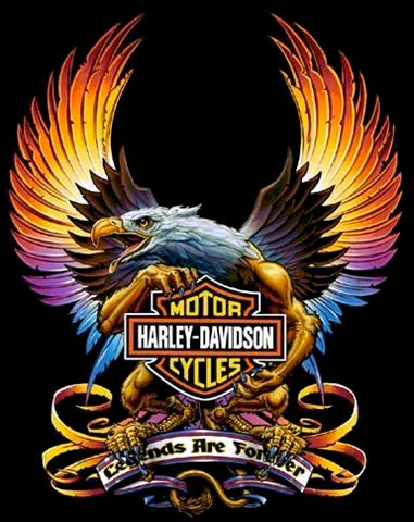 13 best harley davidson picture with eagle images on pinterest