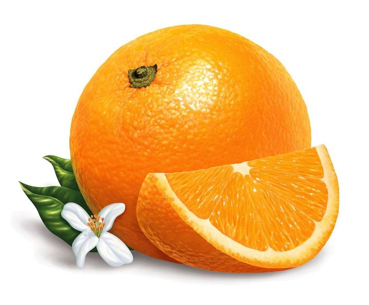 orange illustration realistic by Lomba10