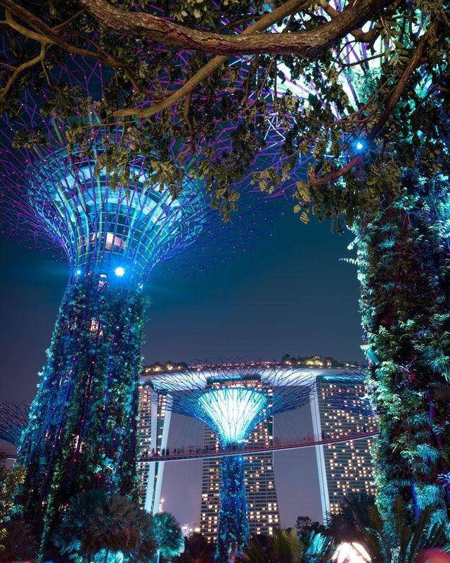 8378e9baa161a007a3445fe09f1d47eb - Gardens By The Bay Christmas Light Show