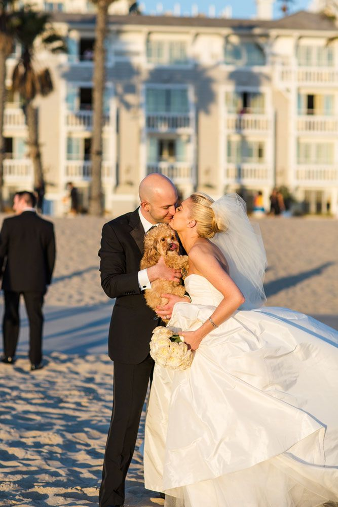 A charming Santa Monica wedding with Jessica and Mark. #Amsale #RealWeddingSomeday, Dogs In Wedding, Belle, Wedding Dogs
