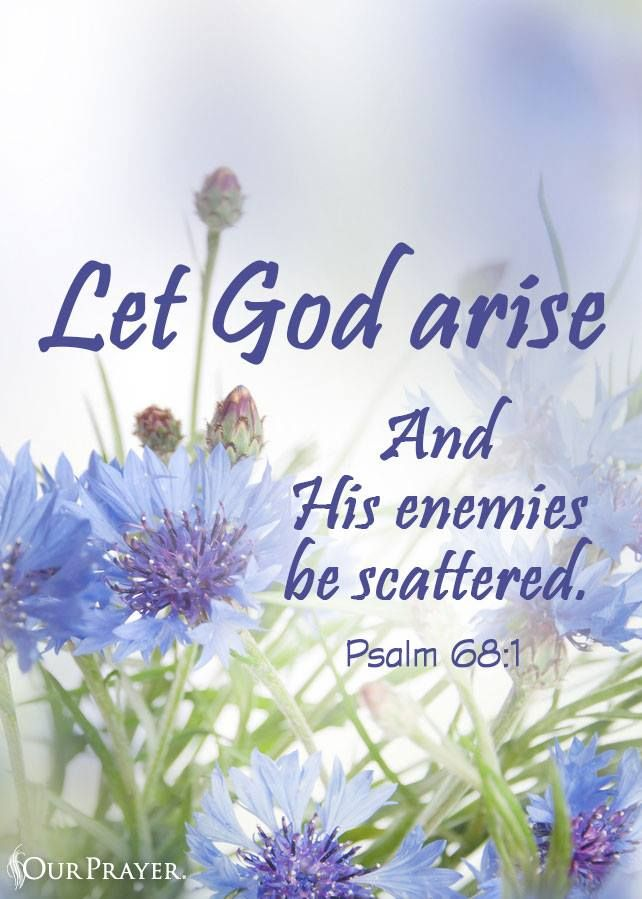 Together Christians Arise and we Declare That Jesus is King of Kings and Lord of Lords. He is the way, the truth, and the life. We serve a Mighty God, let His enemies be scattered.!!!
