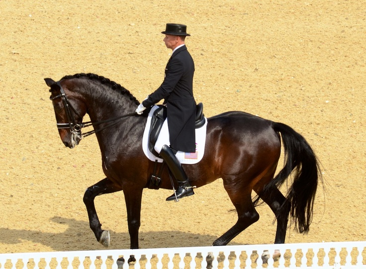 Ravel's passage earned some of the highest marks for Steffen Peters and the US dressage team. Photo by Jennifer Bryant.: Photo