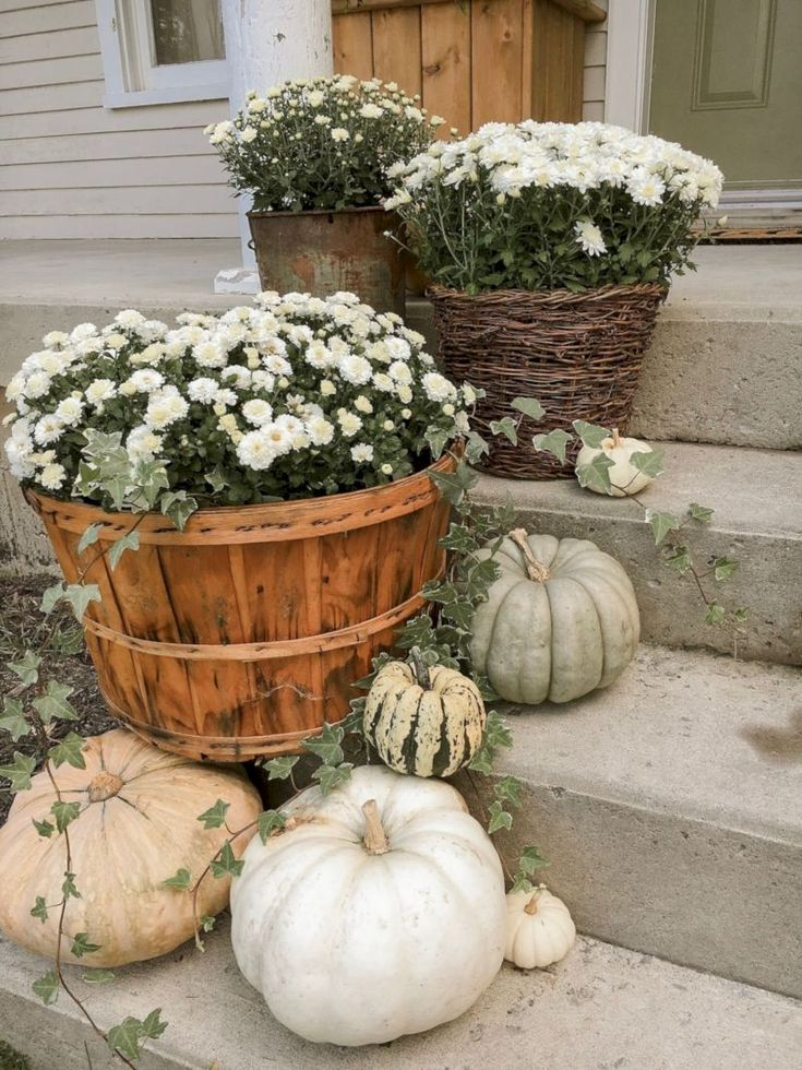 25 Amazing Outdoor Design for Fall
