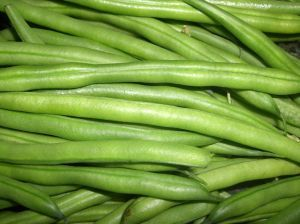 How to Harvest & Store Green Beans | Garden Guides