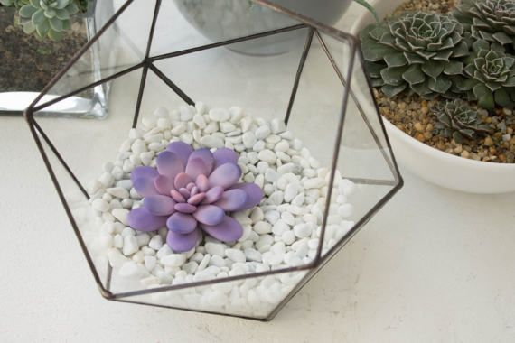 Purple Pink Succulent Fairy Garden in Cup Ideas Polymer Clay Succulent Home House Decor Decoration Modern Minimalist Home Style Housewarming by eteniren. Explore more products on http://eteniren.etsy.com