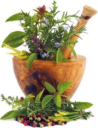 Betegség megelőzés, gyógyítás a természet erejével. Testi lelki gyorssegély - G-Portál