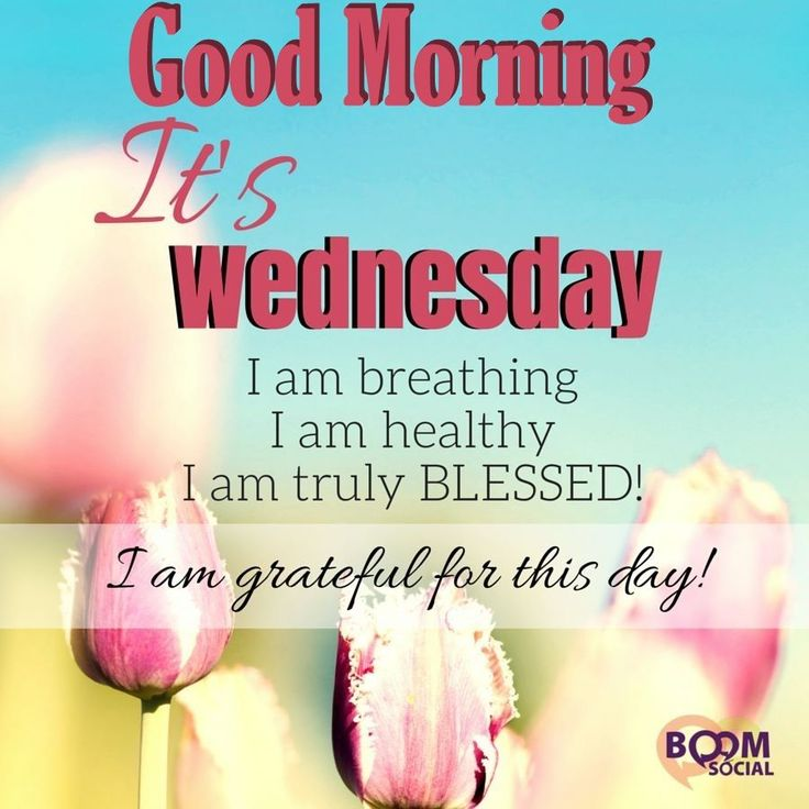 Good Morning Its Wednesday | Good Morning Its Wednesday Pictures, Photos, and Images for Facebook ...