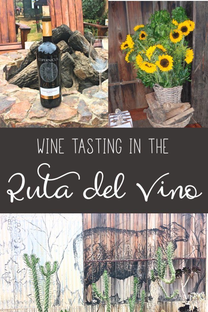 Wine tasting in Mexico's Ruta del Vino, Valle de Guadalupe