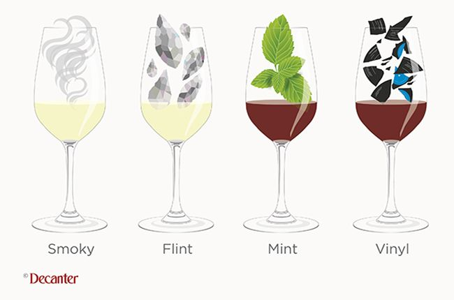 1000 Images About Wine Education On Pinterest