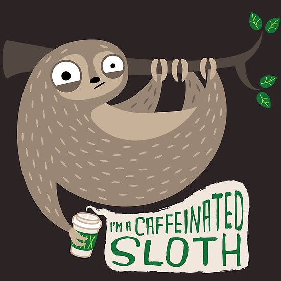 Caffeinated Sloth