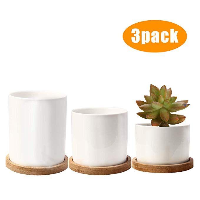 Amazon Com Ceramic Succulent Planter P*T With Drainage 400 x 300