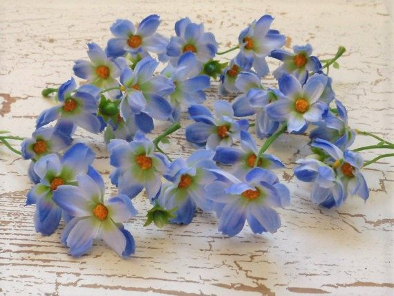 Youll receive 24, yes, TWENTY FOUR baby silk cosmos in adorable periwinkle blue measuring approximately 1.25 inches to 1.75 inches in diameter. Quality material and great color - youre going to love them! Use them as they are, or take them apart and combine with other flowers for a