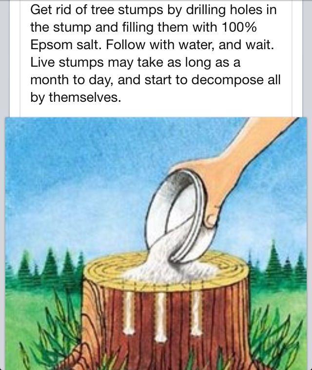 61 Best Health & Beauty-Epsom Salt Uses Images On