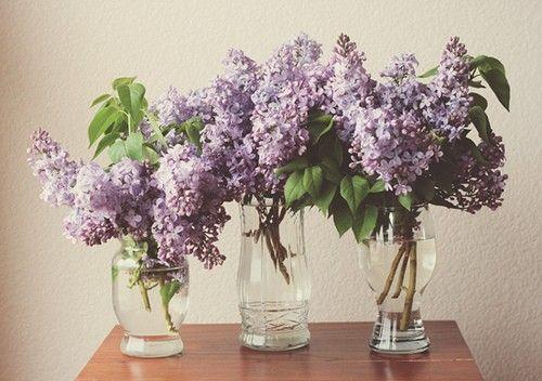 purple+wedding+reception+centerpieces