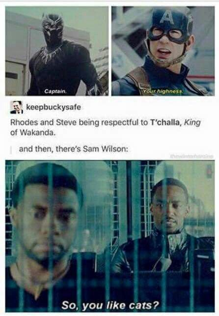 Steve being respectful, and then there's Sam... Civil War