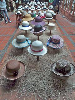 Women's Panama hats