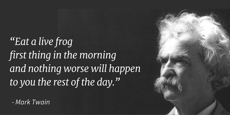 "mark twain quotes | ... worse will happen to you the rest of the day."" – Mark Twain"