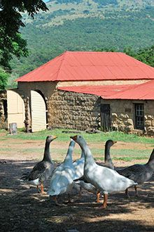 In Northern KwaZulu-Natal the tiny town of Glencoe is undergoing a revival. Here are 10 reasons to visit Glencoe now...