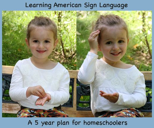 Any website references that believe ASL should not be taught in high school as foreign language?