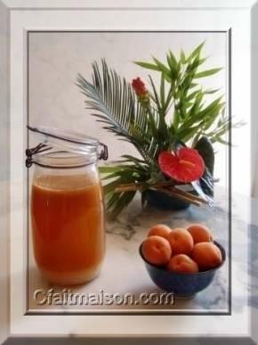PLEINS de recettes de kefir de fruits fait maison