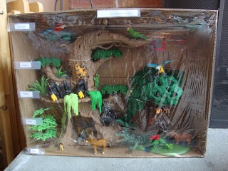 How To Make A Rainforest Diorama From A Shoebox - Classycloud co