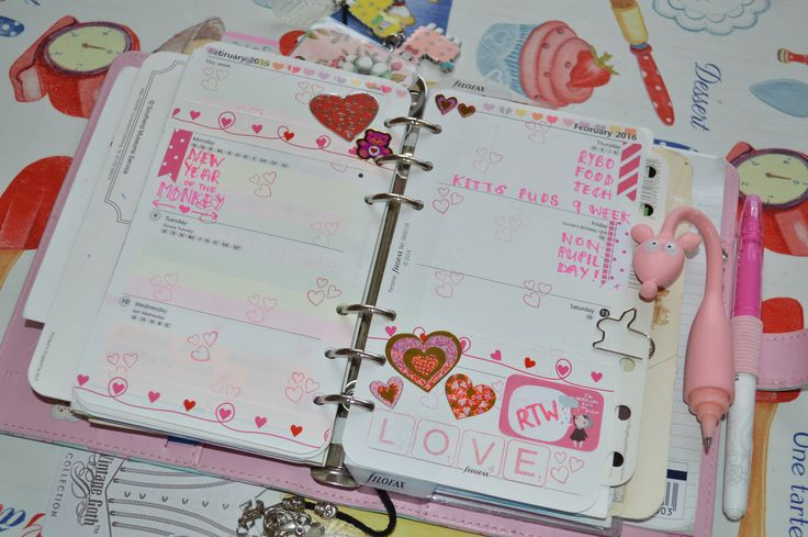 week 6 fresh filofax planner 2016