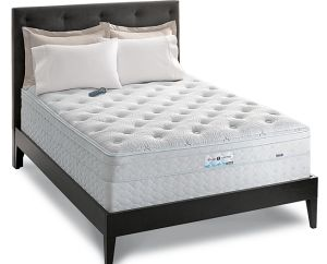 Sealy Mattress Reviews 2011