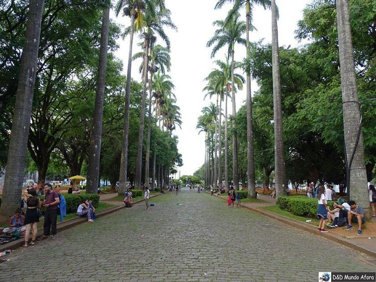 As palmeiras da Praça da Liberdade em Belo Horizonte é um dos cartões-postais do centro da cidade.  Vale a pena uma visitinha. Nós estivemos lá durante o Encontro de Blogueiros de Viagem.  http://ift.tt/2koaDio #mundoafora #dedmundoafora #mundo #travel #viagem #tour #tur #trip #travelblogger #travelblog #braziliantravelblog #blogdeviagem #rbbviagem #instatravel #instagood #wanderlust #photooftheday #blogueirorbbv #blogueirosdeviagem #br_historicalcities #boaviagemoglobo #exploreminas…