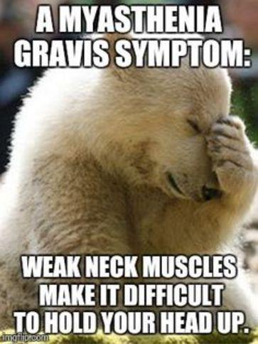 837cfd27438485c3efbd01c4f2eca3ff bear meme myasthenia gravis 124 best mg humor images on pinterest fibromyalgia, chronic pain,Chronic Illness Meme Pretty