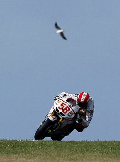 Marco Simoncelli.. never forget