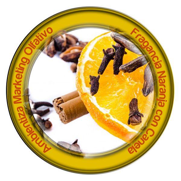 Ambientadores Ambientiza Naranja con Canela