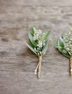 eucalyptus boutonniere - Google Search