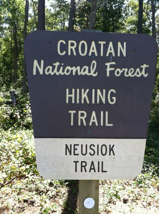 67 best images about things to do in new bern on pinterest for Croatan national forest cabins