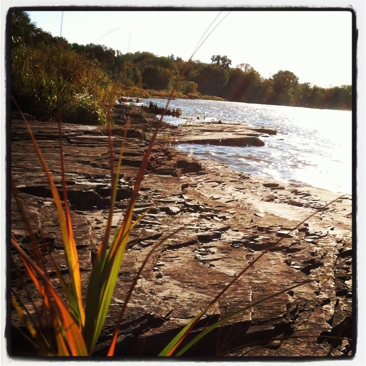 87 best images about toledo oh on pinterest zoos for Maumee river fishing