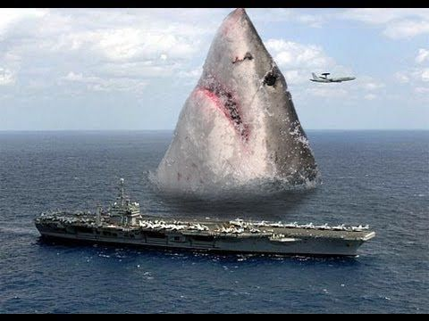 WAY wrong proportions, megalodon was only about 50-60 feet long. But for some reason, I still love this..