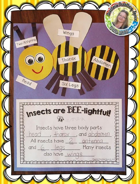 """Insects Are BEE-lightful --- Insect Labeling and Writing Craftivity! This set includes everything you need to create this adorable craftivity and let your students """"Show What They Know""""! It also makes a wonderful Spring bulletin board display!"""