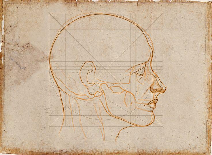 Curso: Drawing the human figure from your mind. Riven Phoenix … video 10. Bibliografía: Drawing the human head. Burne Hogarth, Anatomy for the artist. Sarah Simblet, Sabin Howard Drawings. #anatomy #draw #drawing #anatomia #dibujo #drawinghumanfigure #artist #humanfigure #head