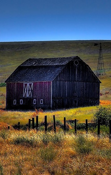 The Color Of Purple Barn