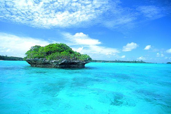 ニューカレドニア 『メトル島』 透き通った海に穏やかな気候。最高です。
