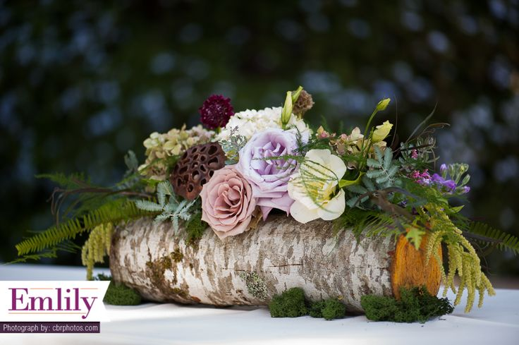 Woodland log centerpiece with lavender roses, lotus pods, ferns, and moss. Birch wood hollowed out.