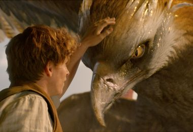 Newt and his Thunderbird