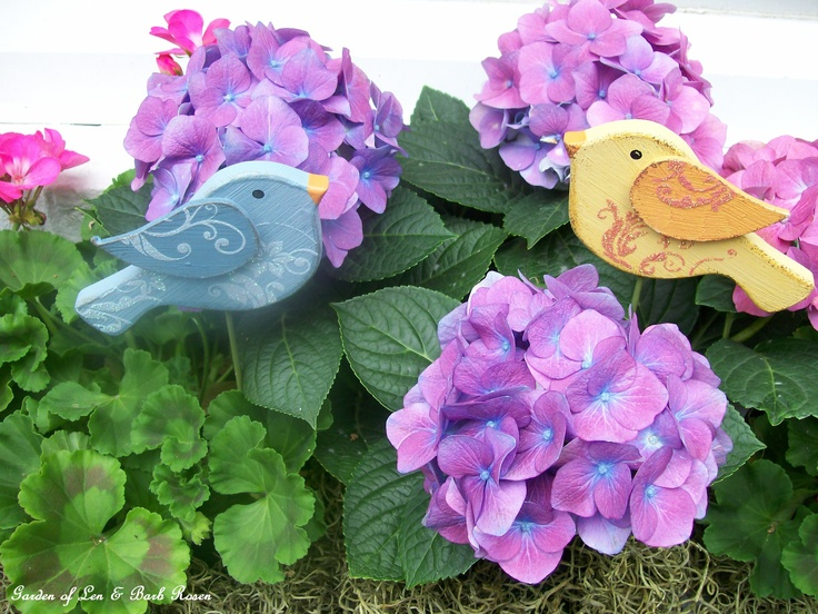 Wooden birds in the window boxes  /  May 2012